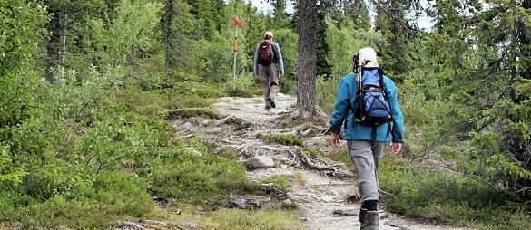 Wat zijn de voordelen van wandelen?